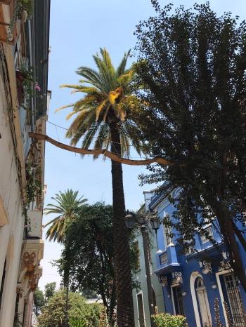 Catwalk between building sin Barrio Yunguay Santiago Chile