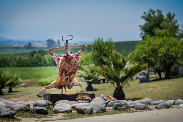 cordero al palo or roasted goat over the fire at Kingston Family Vineyards